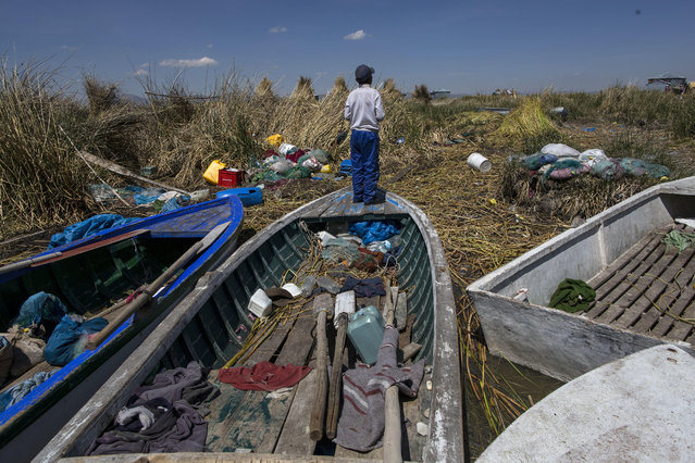 """In this February 2, 2017 photo, a boy stands on a fishing boat on the littered shore of Lake Titicaca in Kapi Cruz Grande, in the Puno region of Peru. The camouflage-colored Titicaca water frogs that used to be in abundance have thinned in numbers and have been placed on a """"critically endangered"""" list by the International Union for Conservation of Nature and just 10,000 remain. (Photo by Rodrigo Abd/AP Photo)"""