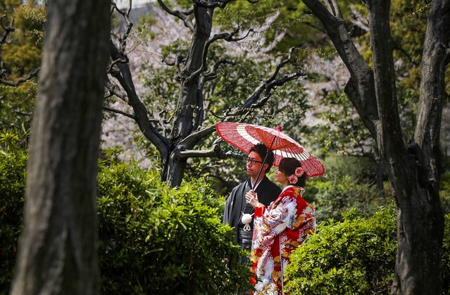 A couple, wearing Japanese traditional attire, poses for wedding photos at a park in Tokyo, on April 8, 2014. (Photo by Eugene Hoshiko/Associated Press)