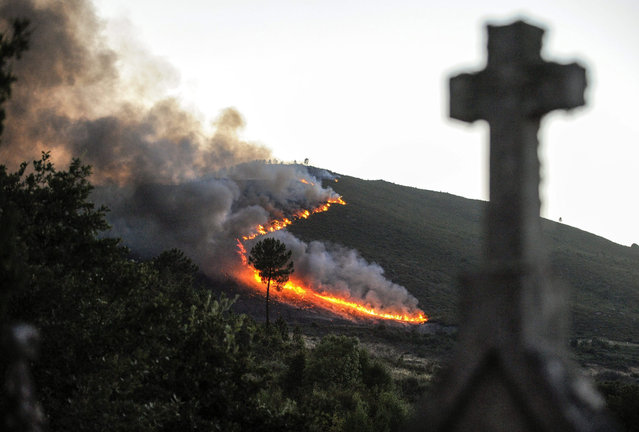 A fire burns more than fifty hectares near Oimbra village in Ourense, northwestern Spain, 23 July 2015. Four helicopters, seven motor pumps and five squads are working to put the fire out. (Photo by Brais Lorenzo/EPA)