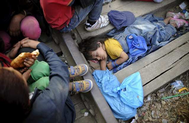 Four-year-old Rashida from Kobani, Syria, part of a new group of more than a thousand immigrants, sleeps as they wait at border line of Macedonia and Greece to enter into Macedonia near Gevgelija railway station August 20, 2015. (Photo by Ognen Teofilovski/Reuters)