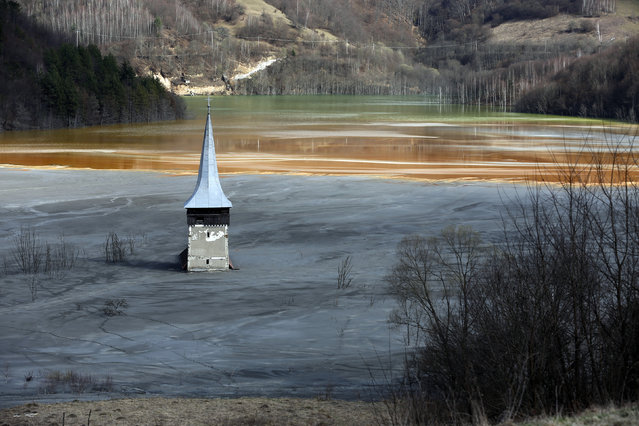 The old church of Geamana village is seen partially submerged by polluted water tainted with cyanide and other chemicals near Rosia Montana, central Romania, March 24, 2014. (Photo by Bogdan Cristel/Reuters)