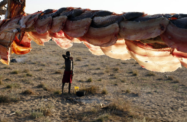 A Turkana boy is pictured at a fishing camp on the western shore of Lake Turkana, close to Todonyang, near the Kenya-Ethiopia border in northern Kenya September 24, 2014. (Photo by Goran Tomasevic/Reuters)