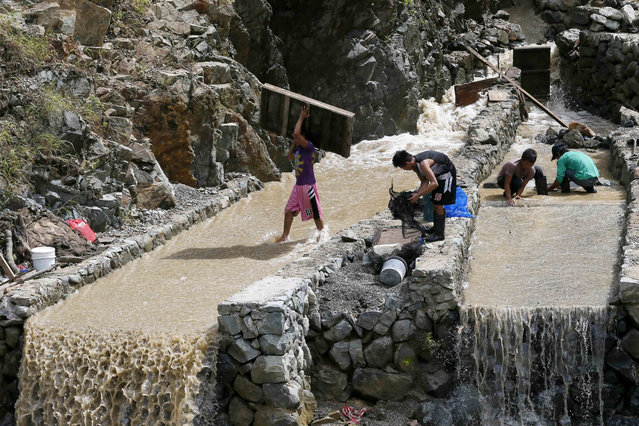 Small scale miners take advantage of the muddy waters from the mountains brought about by Super Typhoon Haima as they prepare to pan for gold at Tuba township, Benguet province in northern Philippines Friday, October 21, 2016. (Photo by Bullit Marquez/AP Photo)