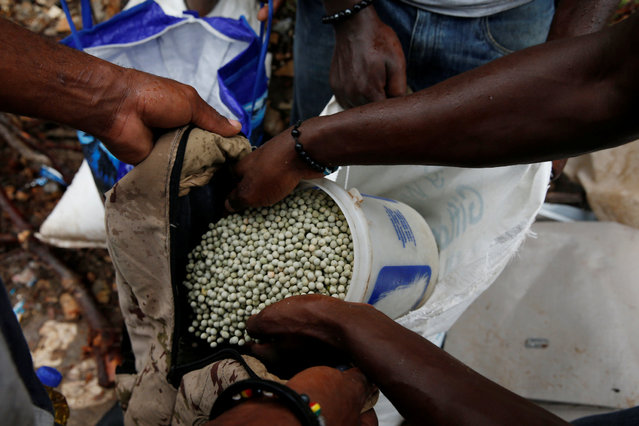 A man shares his sack of beans with relatives during a food distribution after Hurricane Matthew hit Jeremie, Haiti, October 19, 2016. (Photo by Carlos Garcia Rawlins/Reuters)