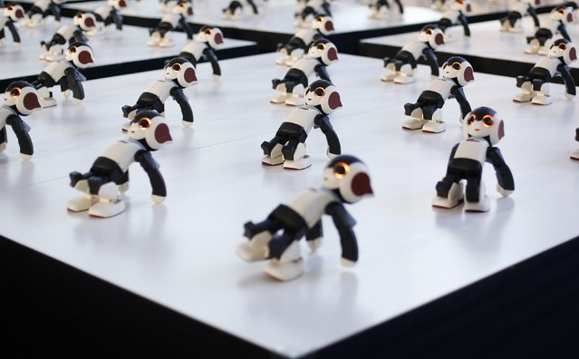 """A hundred humanoid communication robots called """"Robi"""" perform a synchronized dance during a promotional event called 100 Robi, for the Weekly Robi Magazine, in Tokyo January 20, 2015. (Photo by Yuya Shino/Reuters)"""