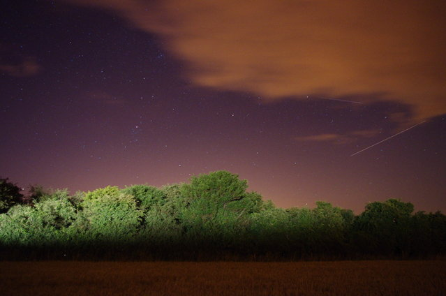 """This photo was taken in August 2010 near Petersfield, England. Photographer pedrog78 said: """"Love the colours in this one – the combo of the ever present light pollution and the trees painted by a passing car give the picture a surreal edge. I think I've got one meteor and one aircraft in this shot"""". (Photo by pedrog78)"""