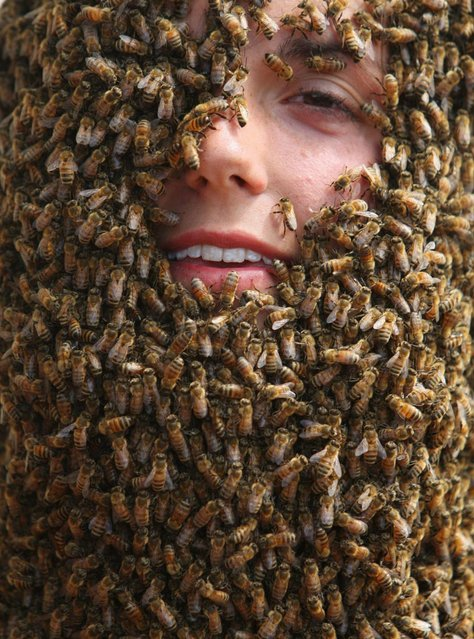 Marenda Schipper shows of her Bee Beard at an annual competition at Clovermead Adventure Farm, Saturday August 10, 2013 in Aylmer, Ontario, Canada. (Photo by Dave Chidley/AP Photo/The Canadian Press)