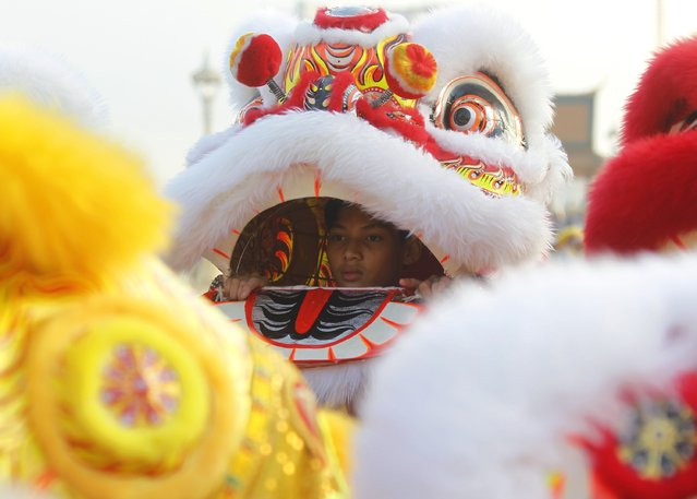 A man performs a lion dance to celebrate Chinese New Year in front of the Royal Palace in Phnom Penh February 18, 2015. (Photo by Samrang Pring/Reuters)