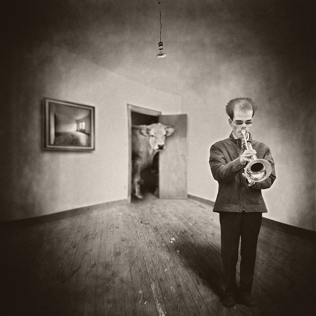 """""""Oscar plays music"""". (Photo and caption by Yves Lecoq)"""