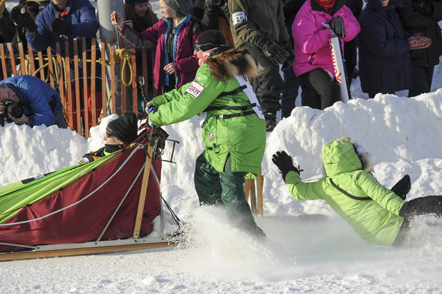 Iditarod musher Ryan Redington, left, loses his assistant as he rounds a turn during the ceremonial start of the Iditarod Trail Sled Dog Race Saturday, March 2, 2019 in Anchorage, Alaska. (Photo by Michael Dinneen/AP Photo)