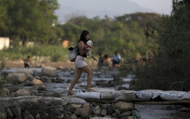 A woman holding her pet crosses illegally into Colombia near the Simon Bolivar International Bridge in La Parada near Cucuta, Colombia, Wednesday, May 1, 2019, on the border with Venezuela. The border area near Cucuta was peaceful Wednesday, even as Venezuelans heeded opposition leader Juan Guaidó's call to fill streets around the nation but security forces showed no sign of backing his cry for a widespread military uprising, instead dispersing crowds with tear gas as the political crisis threatened to deepen. (Photo by Fernando Vergara/AP Photo)