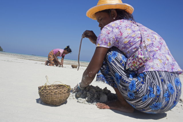 Moken women forage for food during low tide at a beach near their village in Ko Surin National Park. March 1, 2013 – Ko Surin, Thailand. (Photo by Taylor Weidman/zReportage via ZUMA Press)