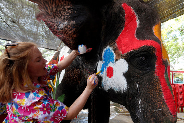 A volunteer paints an elephant in celebration of the Songkran water festival in Ayutthaya province, north of Bangkok, Thailand April 11, 2017. (Photo by Chaiwat Subprasom/Reuters)