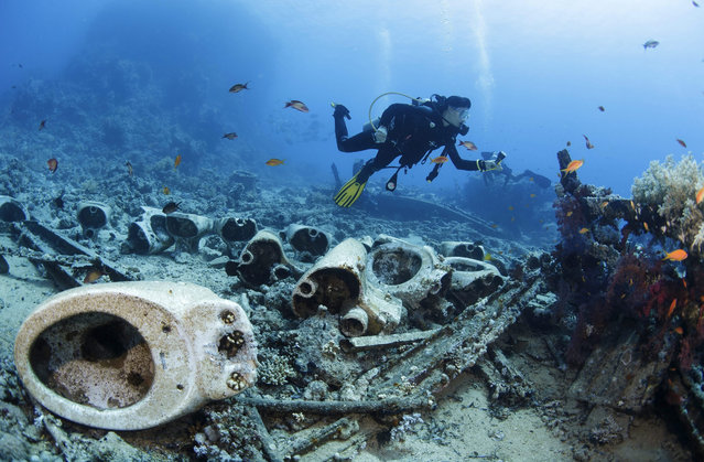 "A diver swims above toilets from a wreck near the Yolanda Reef at Ras Mohammad, close to Sharm El Sheikh, Egypt, 23 July 2015. The famous dive site of the Ras Mohammed National Park contains the remains of the ""Yolanda"" wreck, which sank in the 1970s, leaving toilets and bath tubs on the sea bed. (Photo by Sergey Dolzhenko/EPA)"