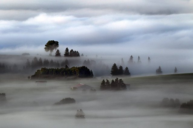 Morning fog covers  meadows near Bernbeuren, southern Germany, early Thursday June 26, 2014. (Photo by Karl-Josef Hildenbrand/AP Photo/DPA)