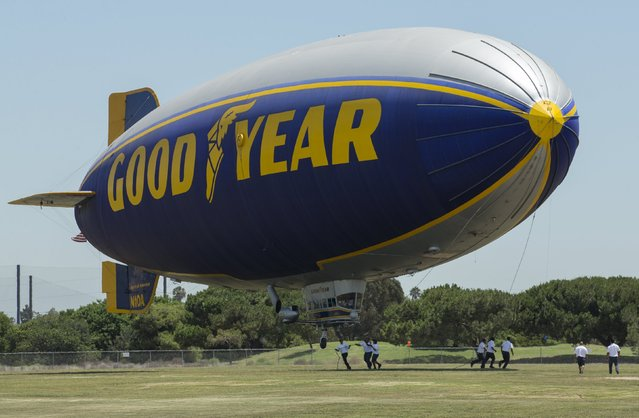 """Grounds grew secure the Goodyear blimp """"Spirit of America"""" as it lands in Carson, California August 5, 2015. (Photo by Mike Blake/Reuters)"""