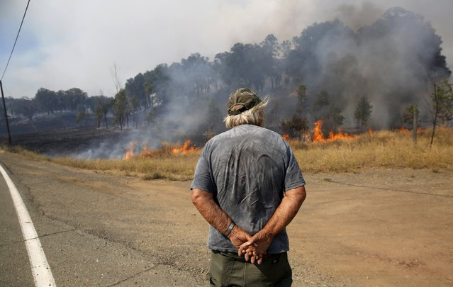 A resident watches as fire burns at the entrance to his property along Morgan Valley Road in Lake County, California, August 12, 2015. (Photo by Robert Galbraith/Reuters)
