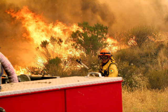 """Los Angeles County firefighters pause to fight the flames due to erratic winds in Placenta Caynon Road in Santa Clarita, Calif., Sunday, July 24, 2016. Flames raced down a steep hillside """"like a freight train"""", leaving smoldering remains of homes and warnings that more communities should be ready to flee the wildfire churning through tinder-dry canyons in Southern California, authorities said Sunday. (Photo by Matt Hartman/AP Photo)"""