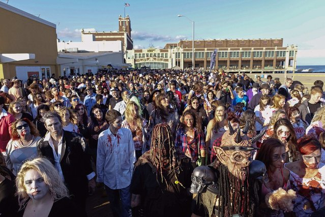 Revellers take part in a Zombie Walk in Asbury Park, New Jersey October 4, 2014. Thousands of revellers met in Asbury park to attempt to break the Guinness World Record of the largest zombie gathering in the world and raise awareness for brain cancer. (Photo by Eduardo Munoz/Reuters)