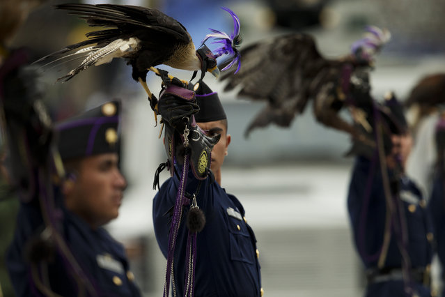 A member of the Air Force carrying a predatory bird looks toward the President as they march past the National Palace during an annual Independence Day parade by Mexico's Armed Forces, in central Mexico City, Mexico, Tuesday, September 16, 2014. Mexico is marking the 204th anniversary of its independence from Spain. (Photo by Rebecca Blackwell/AP Photo)