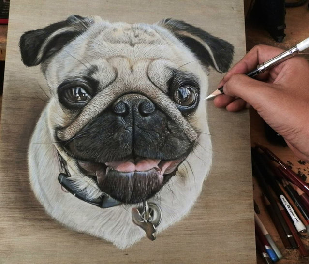 These hyper realistic drawings are so lifelike they could pass for photographs. The incredibly detailed works of art were created by self-taught artist Ivan Hoo, from Singapore, who earns a living from his realistic drawings and paintings. Here: Ivan Hoos drawing of a pug. (Photo by Ivan Hoo/Caters News)