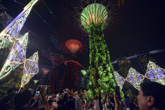 Festive lighting is pictured as visitors throng the Garden by the Bay, showcasing Christmas Wonderland for the holiday season, in Singapore on December 19, 2014. (Photo by Mohd Fyrol/AFP Photo)