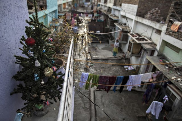 A Christmas tree is seen on a balcony on Christmas eve in a Christian slum in Islamabad December 24, 2014. (Photo by Zohra Bensemra/Reuters)