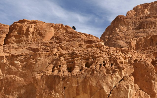 A hiker climbs a rocky area at the Closed Canyon in South Sinai, Egypt, November 21, 2015. (Photo by Asmaa Waguih/Reuters)