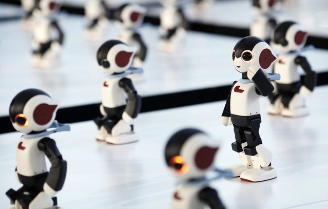 """A hundred humanoid communication robots called """"Robi"""" call their numbers before a dance performance dance during a promotional event called 100 Robi, for the Weekly Robi Magazine, in Tokyo January 20, 2015. (Photo by Yuya Shino/Reuters)"""