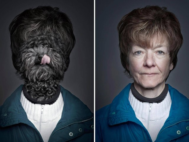 """The """"Underdogs"""" Project by Sebastian Magnani"""