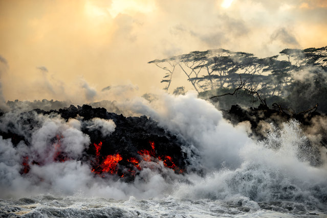 Lava pours into surrounding waters, causing steam to rise. (Photo by CJ Kale/Caters News Agency)