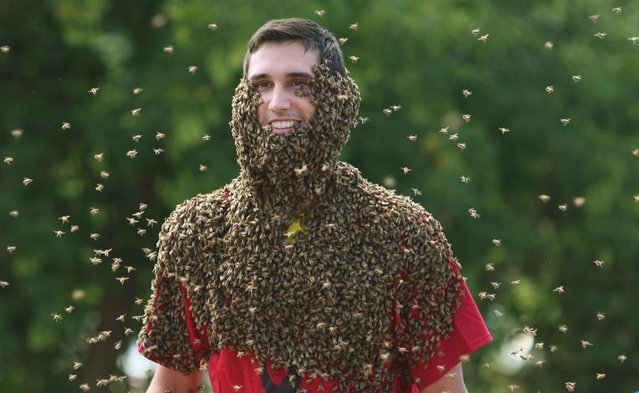 Patrick Boelsterli is surrounded by flying bees as he shows of his bee beard at an annual competition at Clovermead Adventure Farm, Saturday August 10, 2013 in Aylmer, Ontario, Canada. (Photo by Dave Chidley/AP Photo/The Canadian Press)