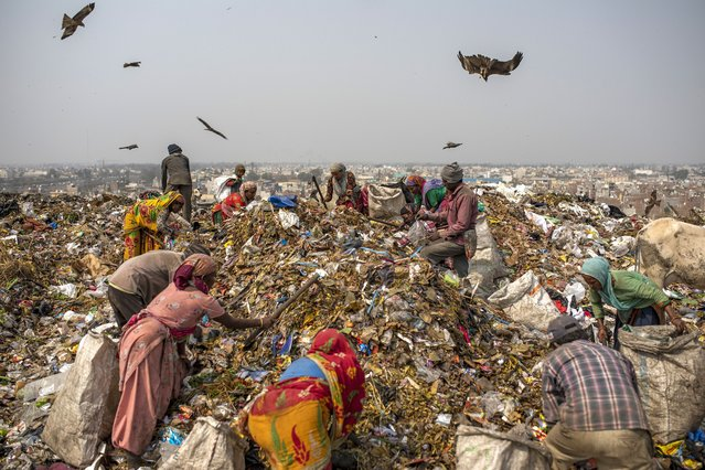 Trash collectors look for recyclables at Bhalswa landfill on the outskirts of New Delhi, India, Wednesday, March 10, 2021. An estimated 20 million people around the world help keep cities clean by scavenging through landfills and dumps. Experts say these trash pickers, who sometimes toil alongside paid municipal sanitation workers, provide a vital service, yet they usually are not on a priority list for vaccines against the coronavirus. (Photo by Altaf Qadri/AP Photo)