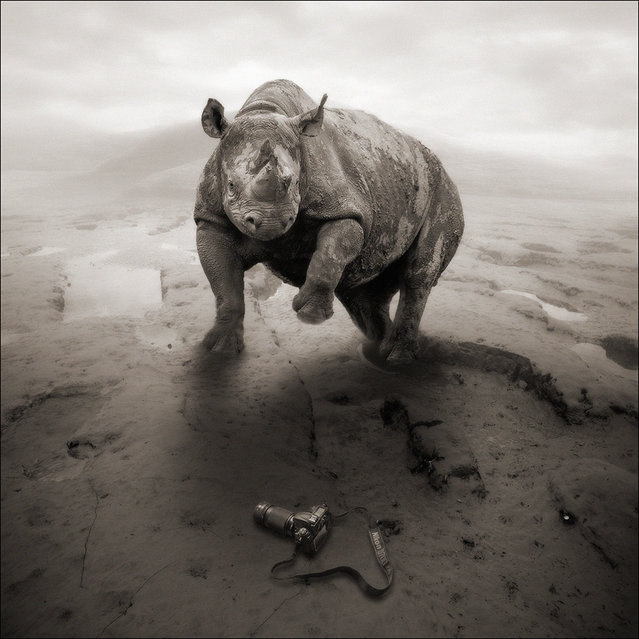 """""""Oh sh*t, I forget my Nikon!"""" (Photo and caption by Yves Lecoq)"""