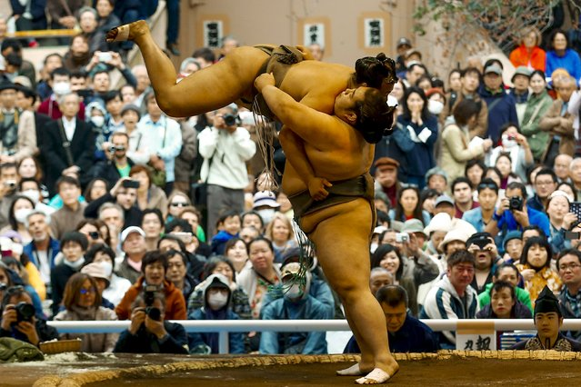 """Sumo wrestlers perform a show fight during the """"Honozumo"""" ceremonial sumo tournament at the Yasukuni Shrine in Tokyo April 3, 2015. (Photo by Thomas Peter/Reuters)"""