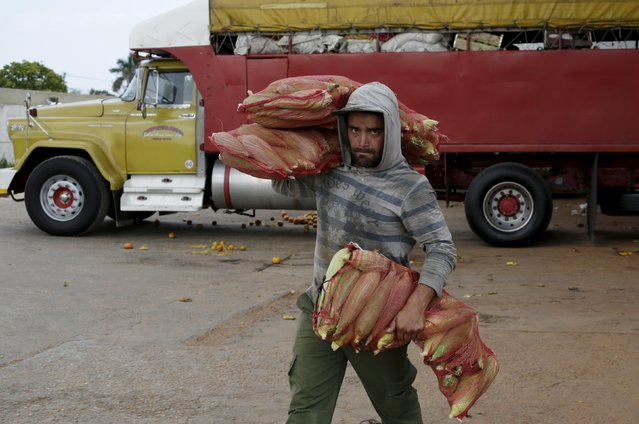 A man carries bags of maize at a wholesale market in Havana April 13, 2016. (Photo by Enrique de la Osa/Reuters)
