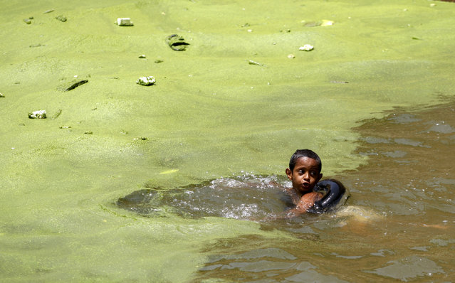 A boy swims in polluted water to beat the heat in the western Yemeni city of Hajja on June 9, 2010. (Photo by Khaled Abdullah/Reuters)