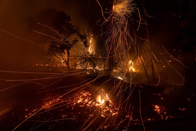 Wind blows embers as the Cave fire burns a hillside in Santa Barbara, California on November 26, 2019. The wind-driven brush fire that started late on November 25, 2019 in Los Padres National Forest near Highway 154 in Santa Barbara County moved quickly downhill, prompting mandatory evacuations and threatening homes. (Photo by Kyle Grillot/AFP Photo)