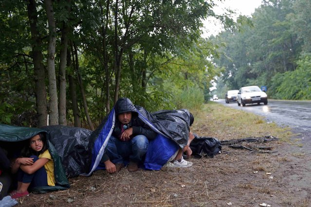 Migrants from Syria use sleeping bags to protect themselves from the rain as they rest on the side of a road after crossing the border illegally from Serbia, near Asotthalom, Hungary July 27, 2015. (Photo by Laszlo Balogh/Reuters)