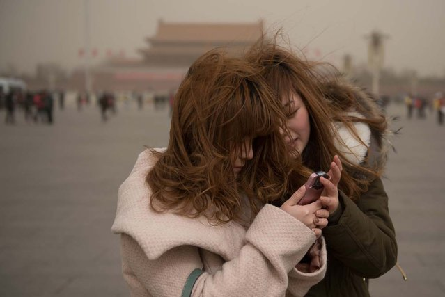 Two women look at a mobile phone as they stand on Tiananmen Square during a sand storm in heavily polluted weather in Beijing on February 28, 2013. Beijing residents were urged to stay indoors as pollution levels soared before a sandstorm brought further misery to China's capital. (Photo by Ed Jones/AFP Photo)