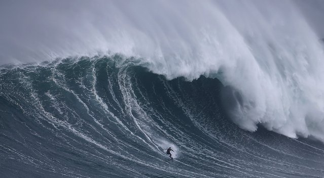 Big wave surfer Sebastian Steudtner of Germany drops in on a large wave at Praia do Norte in Nazare, Portugal November 1, 2015. (Photo by Rafael Marchante/Reuters)