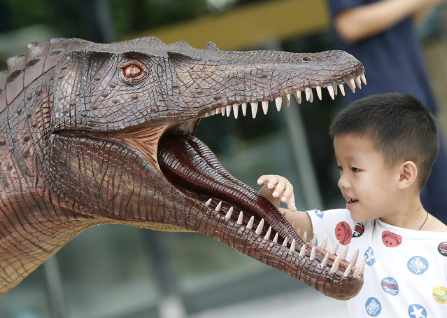 A boy looks at a model of dinosaurs 'Siamosaurus suteethorni' on display in the Amazing Asian Dinosaurs 2015 exhibition, in Bangkok, Thailand, 20 November 2015. The exhibition is display of an ancient world featuring the remains of varied dinosaur species discovered in Thailand and Asia. The exhibit real specimens, which are the important Thai dinosaur fossils as a treasure of Thailand, to mark honor the 60th birthday of Princess Maha Chakri Sirindhorn, and is held from 20 to 29 November. (Photo by Narong Sangnak/EPA)