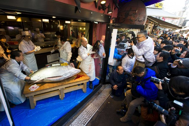 A chef of the sushi restaurant chain Sushi Zanmai holds the head of a blue fin tuna outside the chain's main restaurant at the outer Tsukiji market in Tokyo January 5, 2015. (Photo by Thomas Peter/Reuters)