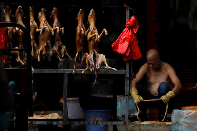 Butchered dogs displayed for sale at a stall inside a meat market during the local dog meat festival in Yulin, Guangxi Zhuang Autonomous Region, China on June 21, 2018. (Photo by Tyrone Siu/Reuters)