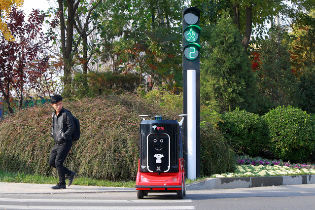 A man looks on as a JD.com driverless delivery robot crosses the road a day after the Singles Day shopping festival, in Tianjin, China on November 12, 2018. (Photo by Reuters/China Stringer Network)