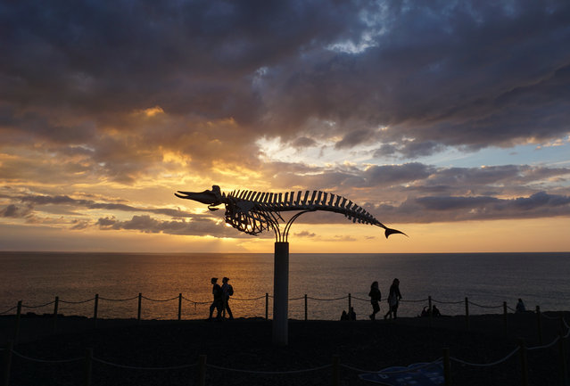 The sun sets behind a skeleton of a beached whale on display on the outskirts of the Spanish fishing town of El Cotillo in the Canary Islands on Sunday, December 30, 2018. (Photo by Raphael Satter/AP Photo)