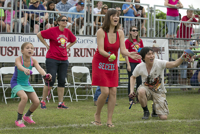 McKenzi Popper, 11, left, cheers on her dog Remy during his winning race to advance to the quarerfinals. The 18th Annual Buda County Fair and Weiner Dog Races was held at city park in Buda Sunday April 26, 2015 sponsored by the Lions Club. (Photo by Ralph Barrera/Austin American-Statesman)