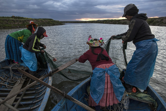 In this February 3, 2017 photo, the Avila family fishes on the Coata River, which flows into Lake Titicaca, in the Puno region of Peru. Untreated sewage water drains from two dozen nearby cities, and illegal gold mines high in the Andes dump up to 15 tons of mercury a year into the river leading to the lake. (Photo by Rodrigo Abd/AP Photo)