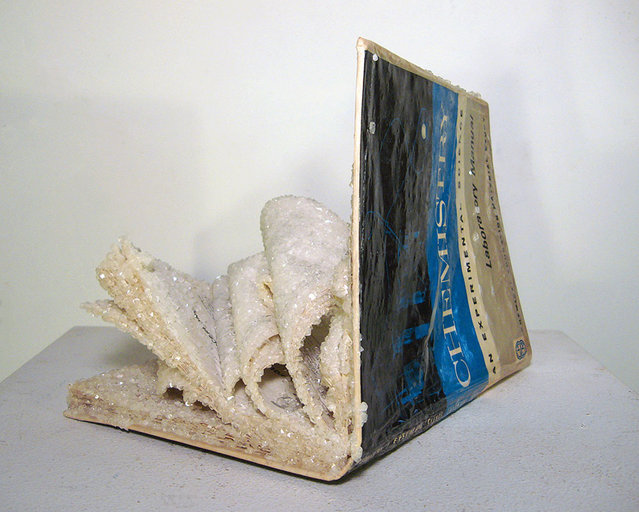 Grows Crystals On Books By Alexis Arnold