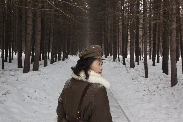 A North Korean soldier, working as a guide, walks through a forest that is said to be a former camp site where the late North Korean leader Kim Il Sung overnight while leading a battle against the Japanese at the foot of Mount Paektu, North Korea, April 4, 2012. (Photo by David Guttenfelder/AP Photo)